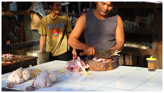 Indonesia1211_04.jpg