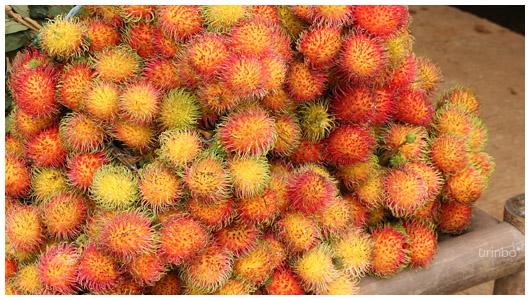 Indonesia1211_08.jpg