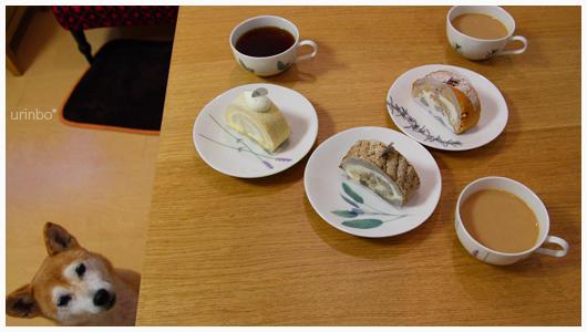 jiyuugaoka_saku02.jpg