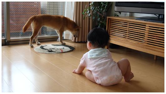 saku_yudu_01.jpg