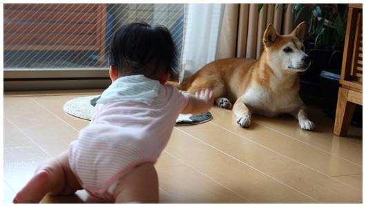 saku_yudu_02.jpg