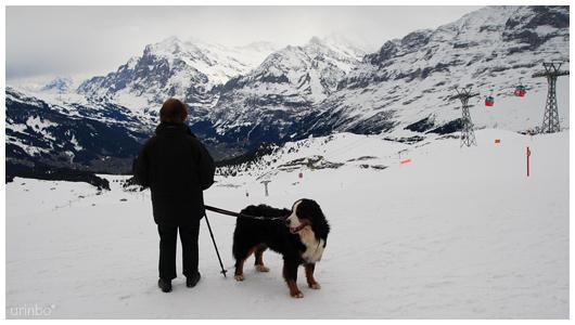 Switzerland007.jpg