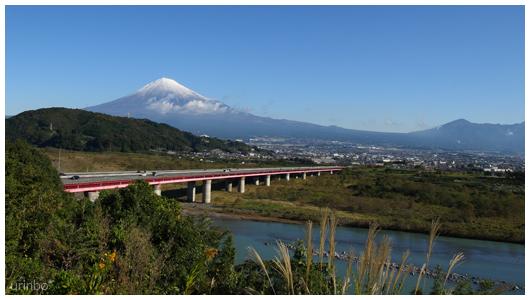 fujikawa_IC.jpg